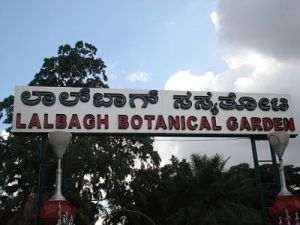 lal-bagh_opt